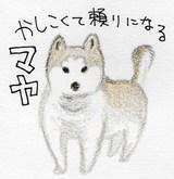 Nankyoku01_1