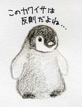 Penguin01_1